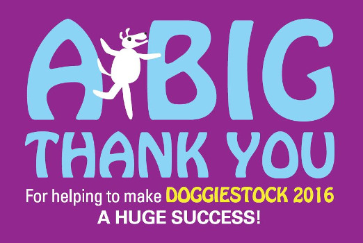 DoggieStock Thank you