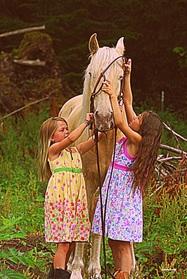 Rancho Laguna Adopt a Horse image